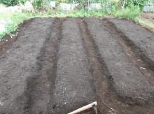 t02200164_0400029811647209512 農業開始