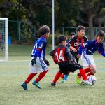 DSC_8482s--150x150 第25回プリンシパルホームF・Marinos CUP GROWGAMEの様子