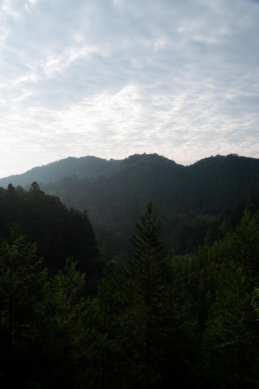 DSC_7945 登山録 今熊山(八王子市上川町)