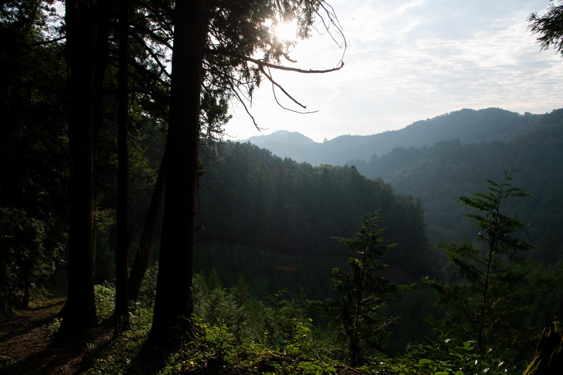 DSC_7948 登山録 今熊山(八王子市上川町)