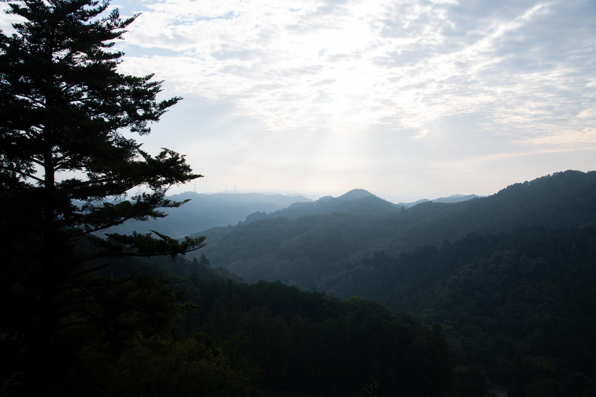 DSC_7956 登山録 今熊山(八王子市上川町)