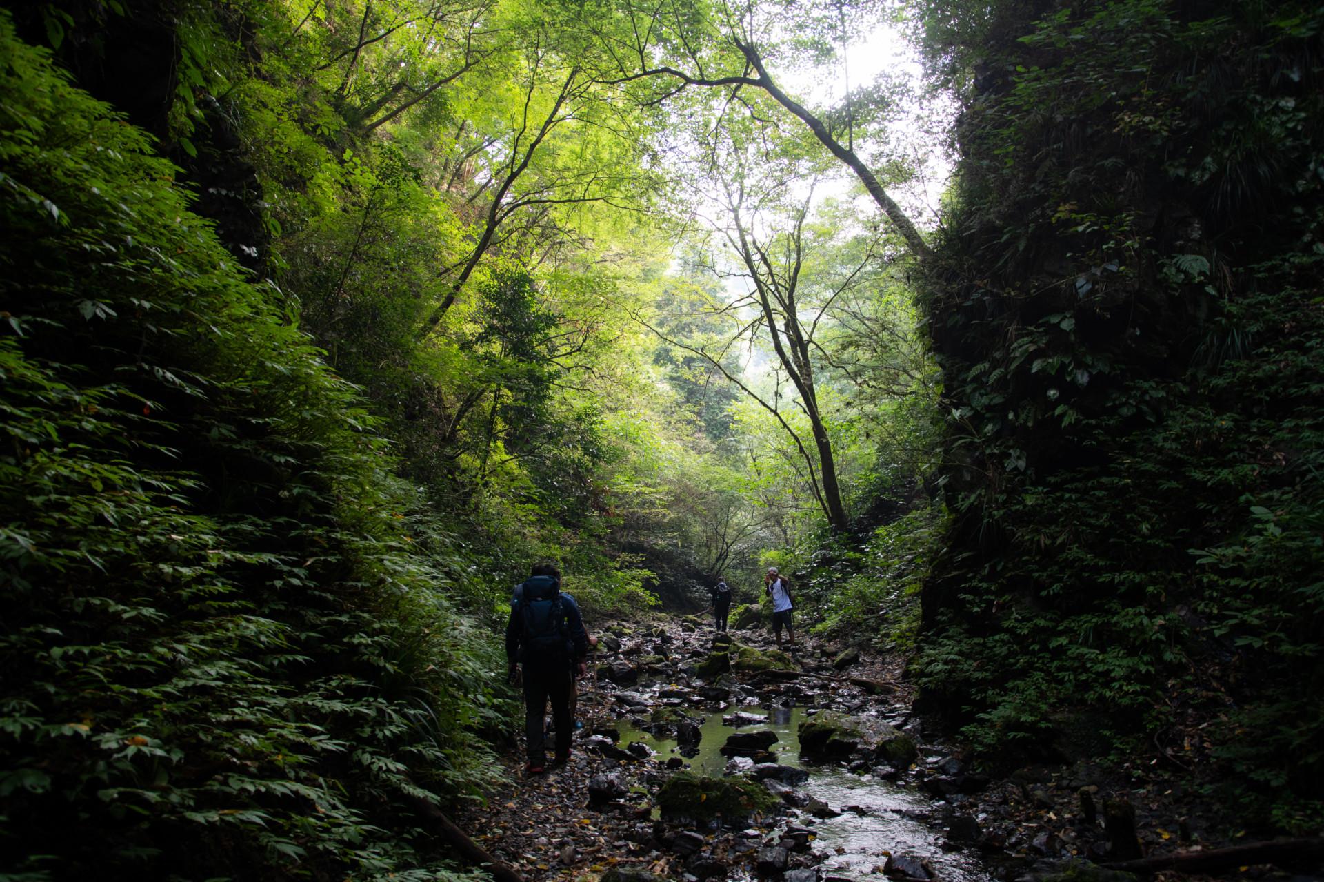 DSC_8059-1 登山録 今熊山(八王子市上川町)
