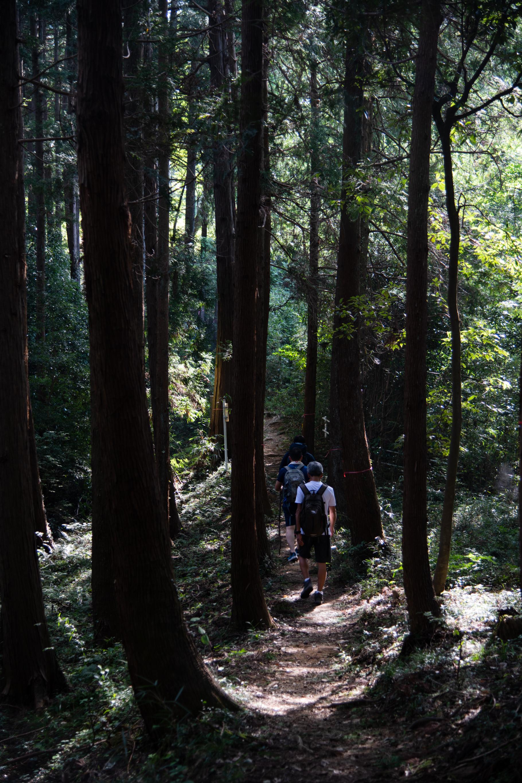 DSC_8078 登山録 今熊山(八王子市上川町)