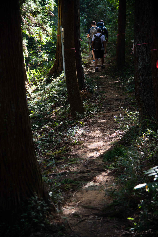 DSC_8079 登山録 今熊山(八王子市上川町)