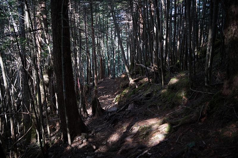DSC_0509-1 登山録 天狗岳