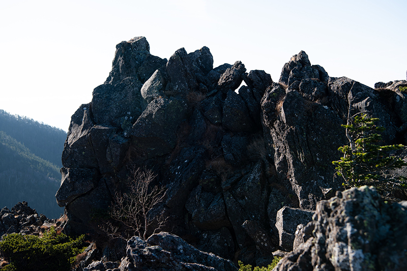 DSC_0700-1 登山録 天狗岳