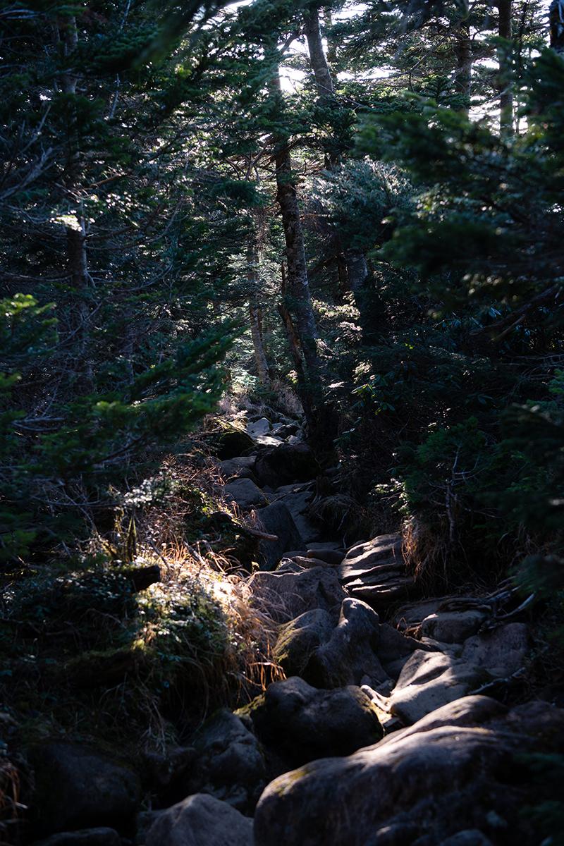 DSC_0728-1 登山録 天狗岳