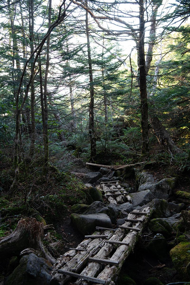 DSC_0733-1 登山録 天狗岳