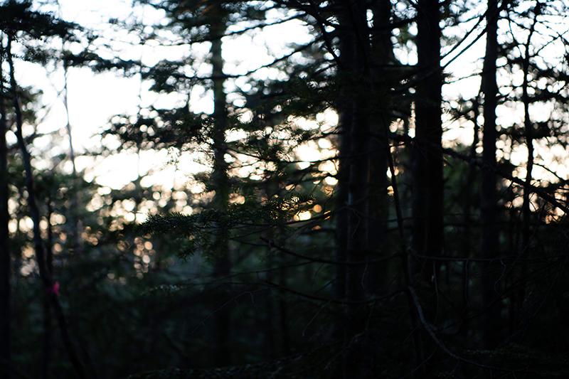 DSC_0770-1 登山録 天狗岳