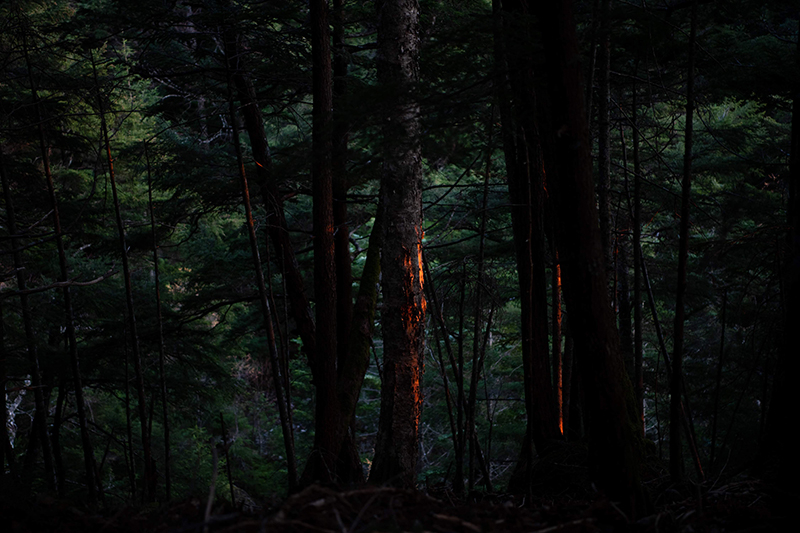 DSC_0784-1 登山録 天狗岳