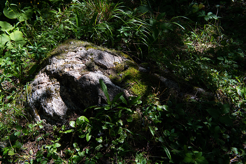 DSC_7067-1 登山録 槍ヶ岳(3日目)