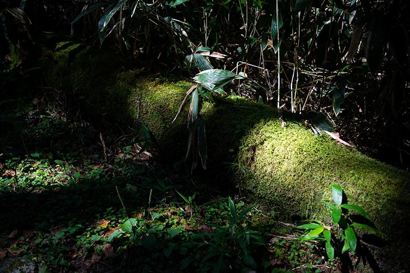 DSC_7078-1 登山録 槍ヶ岳(3日目)